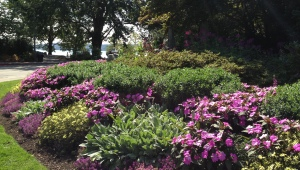 Seward Park