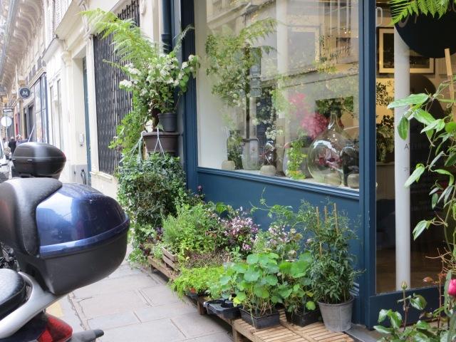 Plant shop in Paris